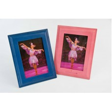 Pink/Blue Leather Picture Frames